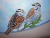 Birds and Sky Mural - Choc Hospital Murals